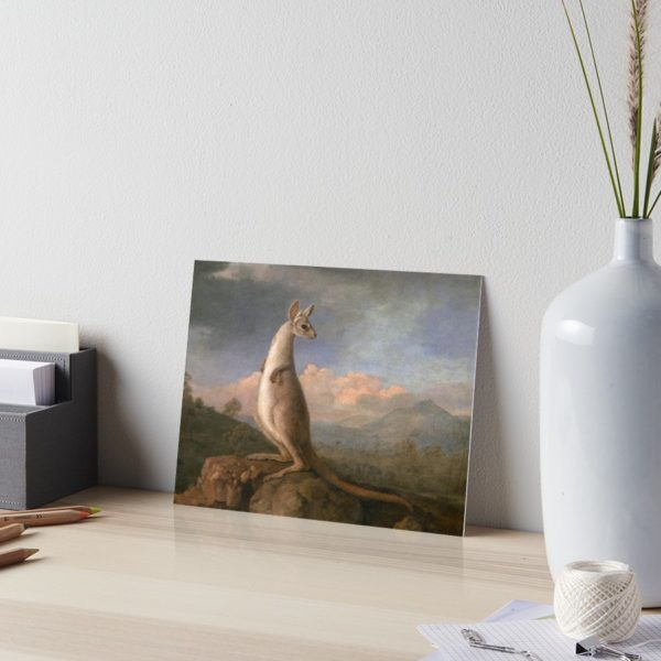 The Kongouro Oil Painting by Australian Artist George Stubbs Art Boards